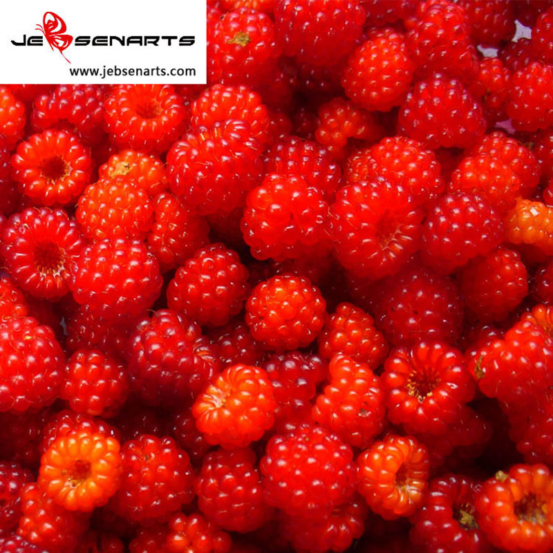 Wild Berry-1